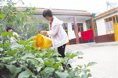 河北邱县农村生活污水处理率达95.9%